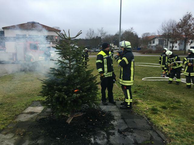 Ndr Weihnachtsbaum.Besuch Von Ndr 1 Radio Niedersachsen